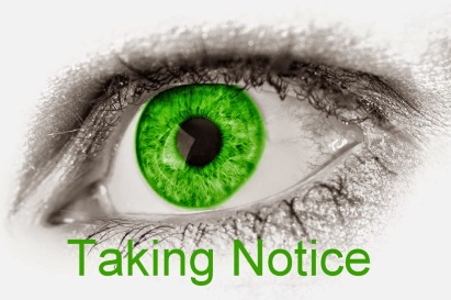 Taking Notice